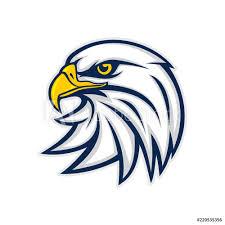 Fotografie Obraz Eagle Head Logo Vector Posterscz