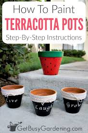 painting terracotta pots is a fun way to add color to your home or for