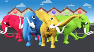 elephant color. Perfect Elephant Elephant Color Songs  Cartoons For Children Colors  To Learn Inside Y