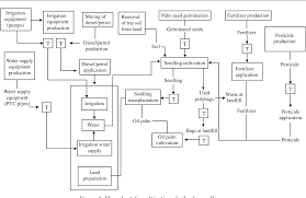 Figure 1 From Life Cycle Assessment Of Oil Palm Seedling