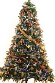 We believe our Christmas Trees really are something to behold, here are a  few examples just to whet your whistle!