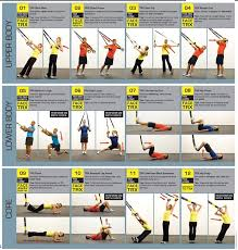 Trx Exercises Chart Suspension Training Trx Facts And Posters Trx Training