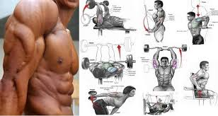 the best tricep exercises complete