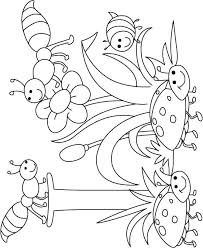 insect coloring pages preschool herbie husker page flowers s