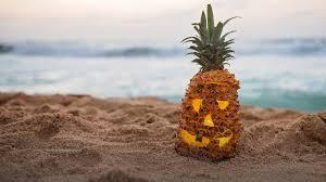 pineapple beach wallpaper. 3580aae2da06c70d9c482b198fd47ea4 pineapple beach wallpaper h