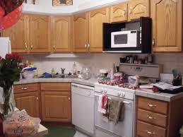 rta kitchen cabinets reviews unique best rta kitchen cabinets fresh 15 kitchen hbe kitchen