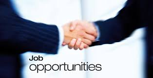 Image result for graduate employment opportunities