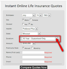 Online Insurance Quotes Awesome Download Life Insurance Quote Form Ryancowan Quotes