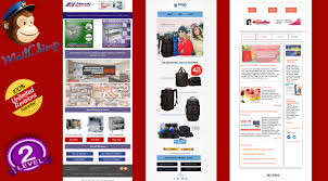 Weekly Newsletter Template Stunning Design Editable Mailchimp Newsletter Template By Webxpertwp