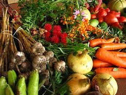 organic farming  vegetables from ecological farming