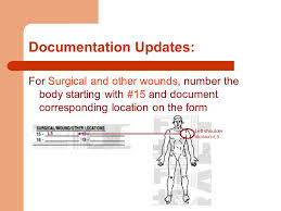 form l5 pressure ulcer prevention and wound and skin documentation update