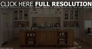 Antique White Kitchen Antique White Kitchen Cabinet Ideas Ideas Houseofphycom