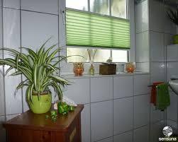 Lichtdurchlässige Plissees Als Sichtschutz Am Badezimmer Fenster