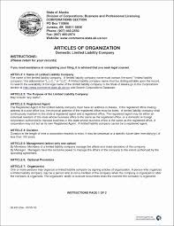 Corporate Operating Agreement Template Luxury Physician Employment ...