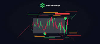 Basics At A Glance Chart How To Use Xena Market Barometer In Your Trading Xena