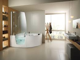 wheelchair accessible bathroom design. Luxury Handicap Accessible Bathroom Designs Factsonline Home Wheelchair Design U