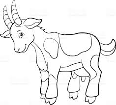 Coloring Pages Farm Animals Cute Goat stock vector art 564563486 ...
