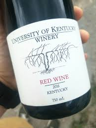 Cool Wine Labels My University Has Started A Winemaking Major Thought This