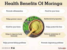 of moringa and its side effects
