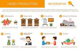 Honey Processing Flow Chart Honey Process Stock Illustrations 159 Honey Process Stock