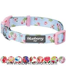 Blueberry Pet Collar Size Chart Blueberry Pet Spring Scent Floral Collection Regular