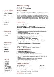 Resume Examples In English For Job Technical Manager Resume Example Sample Project Manager