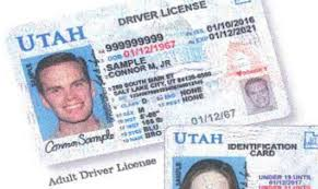 Driver Illegally Data Utah Division License Finds Audit Shares