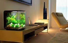 Fish Tank Coffee Table Uk Interior Terrific How Make Aquarium Stands Interior Improvement