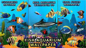 Aquarium Fish Wallpaper 3D: Live Fish ...