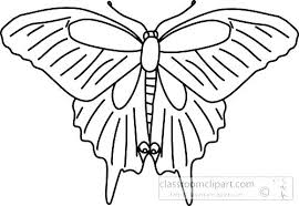 Outline Of A Butterfly Butterfly Coloring Book Pages To Print