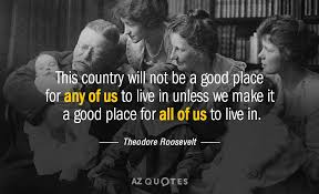Theodore Roosevelt Quotes Delectable Theodore Roosevelt Quote This Country Will Not Be A Good Place For