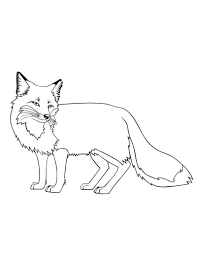 Small Picture Fox Coloring Pages Printable art Pinterest Foxes