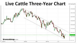 Investing Com Live Chart Index Rebalancing Favours Cattle Sugar Losing Out