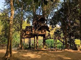 Treehouse In Thailand