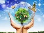 Экология картинки