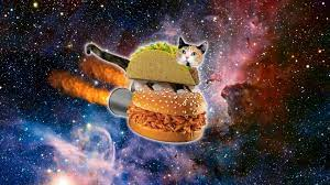 Space Cat wallpapers - HD wallpaper ...