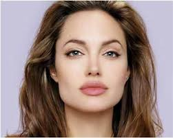 eyebrow shapes for square faces. angelina jolie eyebrow shape shapes for square faces stylecraze