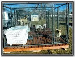 indoor dog kennel ideas indoor dog pen indoor dog kennel ideas photo 8 of 8 indoor indoor dog kennel