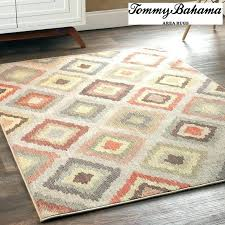 9x12 indoor outdoor rugs decoration best easy living rug implausible