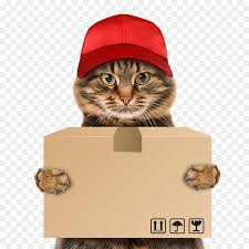 Image result for pet delivery
