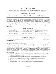 CEO Resume Sample Executive Managment ...