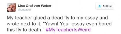 jimmy fallon asks fans to flood twitter comical stories about  tough critic this person admitted that her teacher once glued a dead fly to her