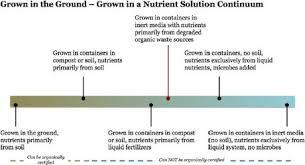 The Classification Gap Of Organic Hydroponic Food