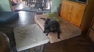 big barker dog beds.  Barker Comparing The Big Barker Dog Bed With My DIY Intended Beds A