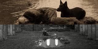 """De Tarkovski à """"Air Bud"""" : nos 10 chiens les plus marquants de l'histoire  du cinéma - Les Inrocks"""