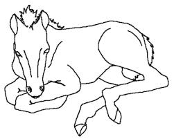 Horse Jumping Coloring Pages Printable Coloring Sheet Anbu