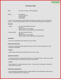 how to make cv resume samples cv resume sample elegant curriculum vitae template free english cv