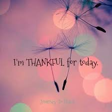 Image result for I am thankful I came to the USA. Among many things, I learned about my personality and how to stay healthy through the Process Communication Mode