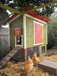 Constructing a chicken coop in the backyard will enable you to recycle your  food scraps to raise chickens for meat pick organic eggs and develop  excellent