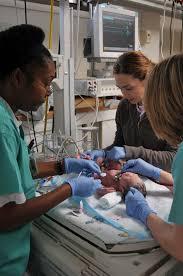 a day in the life of a nicu nurse neonatal nurse job duties